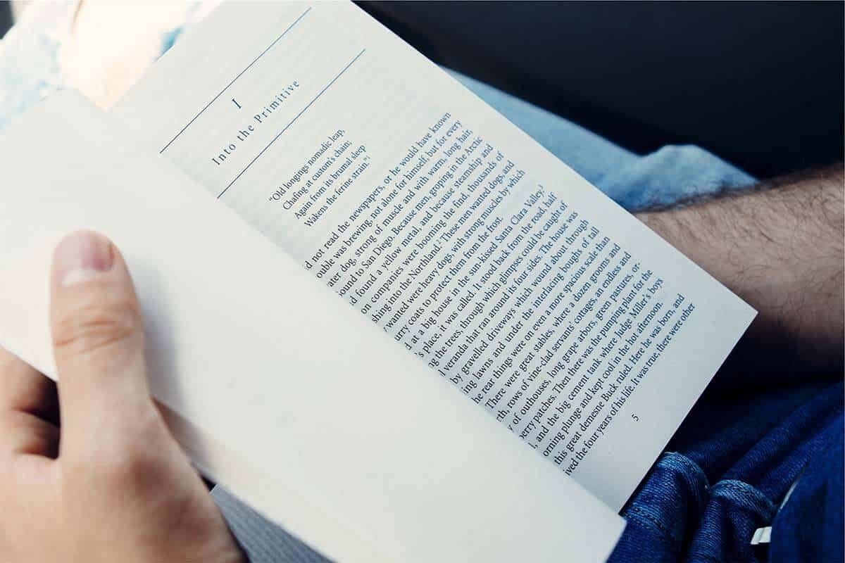 זכויות יוצרים במאמרים